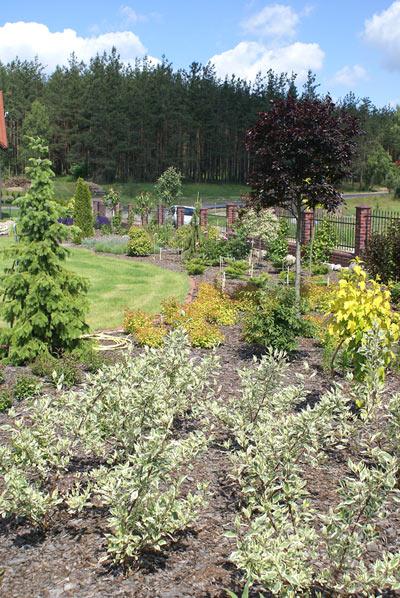 Przeglądasz obrazy ze strony: Ogród przy domu  Piękne kwiaty w różnych miejscach ogrodu, obszerny, zadbany trawnik, miejsce parkingowe na samochody.